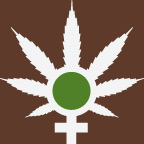 The Women of Weed